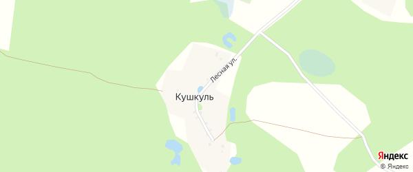 Лесная улица на карте деревни Кушкуля с номерами домов