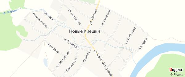 Карта села Новые Киешки в Башкортостане с улицами и номерами домов