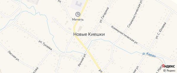 Рощинская улица на карте села Новые Киешки с номерами домов