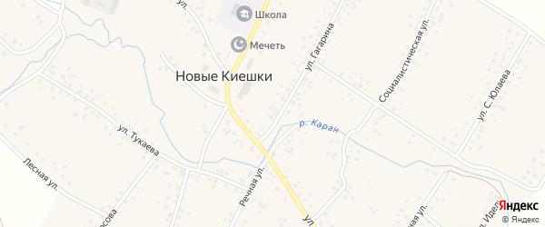 Улица Заря на карте села Новые Киешки с номерами домов