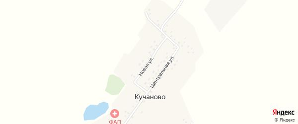 Новая улица на карте деревни Кучаново с номерами домов