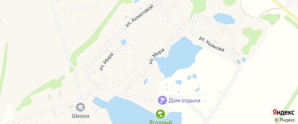 Улица Мира на карте Ягодной деревни с номерами домов
