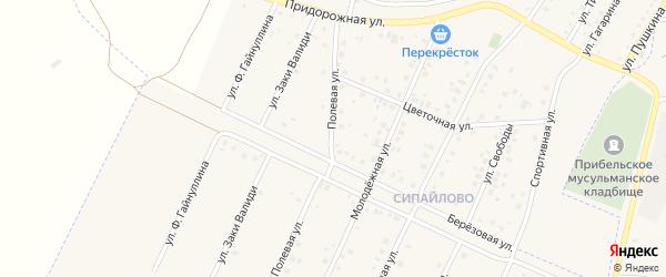 Полевая улица на карте села Прибельского с номерами домов
