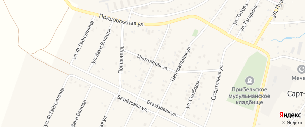 Молодежная улица на карте села Прибельского с номерами домов
