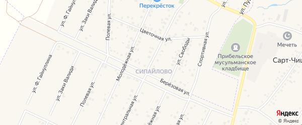 Центральная улица на карте села Прибельского с номерами домов
