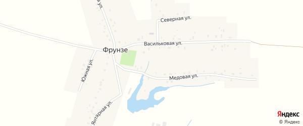 Южная улица на карте деревни Фрунзе с номерами домов