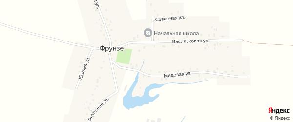 Янтарная улица на карте деревни Фрунзе с номерами домов