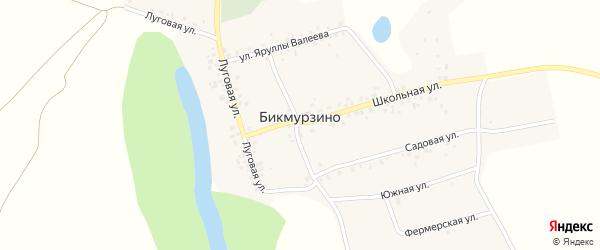 Южная улица на карте деревни Бикмурзино с номерами домов