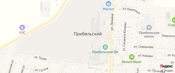Улица Энтузиастов на карте села Прибельского с номерами домов