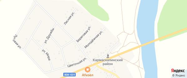 Молодежная улица на карте деревни Старошареево с номерами домов