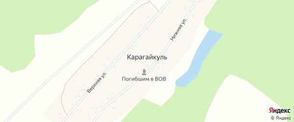 Нижняя улица на карте деревни Карагайкуля с номерами домов