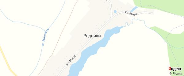 Улица Мира на карте деревни Родники с номерами домов