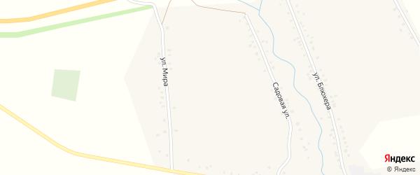 Молодёжная улица на карте села Васильевки с номерами домов