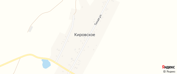 Тихая улица на карте деревни Кировского с номерами домов