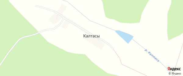Лесная улица на карте деревни Калтасов с номерами домов