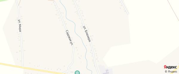 Улица Блюхера на карте села Васильевки с номерами домов