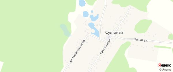 Улица Механизаторов на карте деревни Султаная с номерами домов