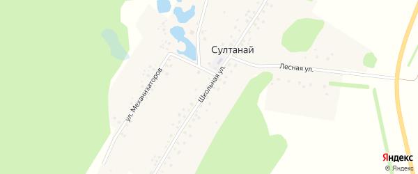 Школьная улица на карте деревни Султаная с номерами домов