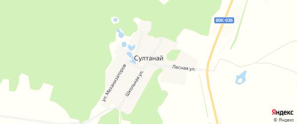 Карта деревни Султаная в Башкортостане с улицами и номерами домов
