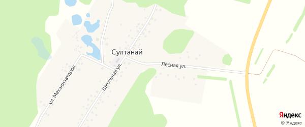 Лесная улица на карте деревни Султаная с номерами домов