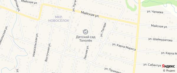 Лесная улица на карте села Красноусольского с номерами домов