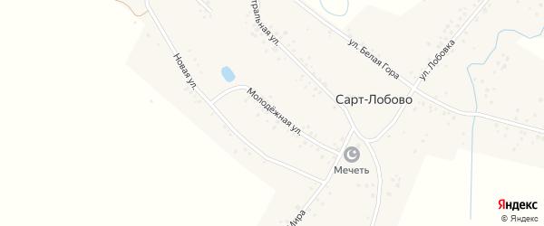 Новая улица на карте села Сарт-Лобово с номерами домов