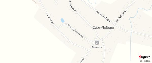 Молодежная улица на карте села Сарт-Лобово с номерами домов