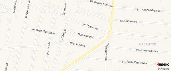 Луговая улица на карте села Красноусольского с номерами домов