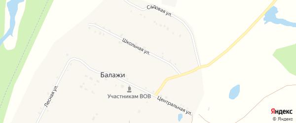 Центральная улица на карте деревни Балажи с номерами домов
