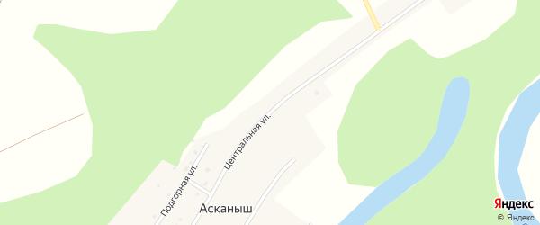 Центральная улица на карте деревни Ашинского с номерами домов