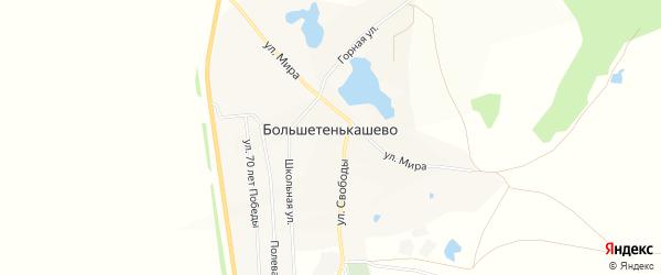 Карта деревни Большетенькашево в Башкортостане с улицами и номерами домов