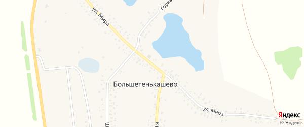 Улица Мира на карте деревни Большетенькашево с номерами домов