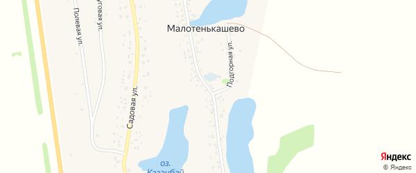 Улица Победы на карте деревни Малотенькашево с номерами домов