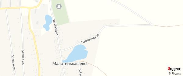 Цветочная улица на карте деревни Малотенькашево с номерами домов