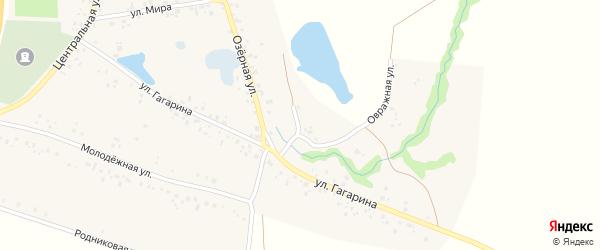 Улица Дюртюли на карте села Байгильдино с номерами домов