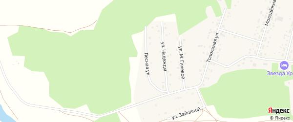 Лесная улица на карте села Балтики с номерами домов