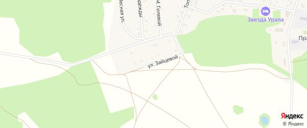 Улица Имени Н.В.Зайцевой на карте села Балтики с номерами домов