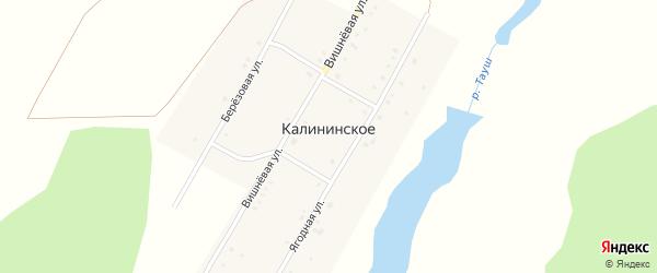 Березовая улица на карте деревни Калининского с номерами домов