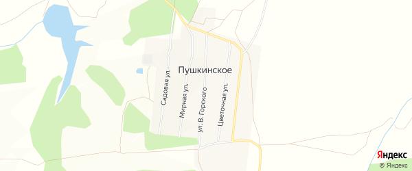 Карта деревни Пушкинского в Башкортостане с улицами и номерами домов