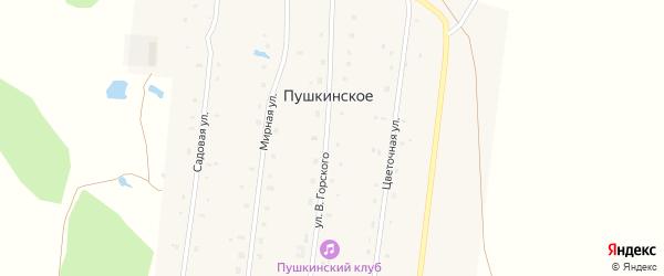 Цветочная улица на карте деревни Пушкинского с номерами домов