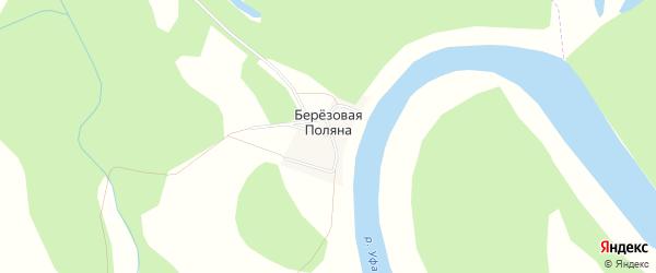 Карта деревни Березовой Поляны в Башкортостане с улицами и номерами домов