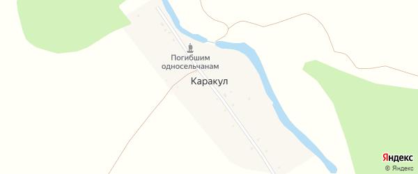 Улица Дружбы на карте деревни Каракула с номерами домов