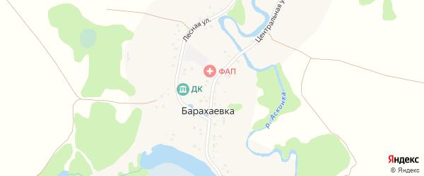 Центральная улица на карте деревни Барахаевки с номерами домов