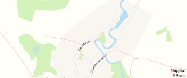 Лесная улица на карте деревни Барахаевки с номерами домов