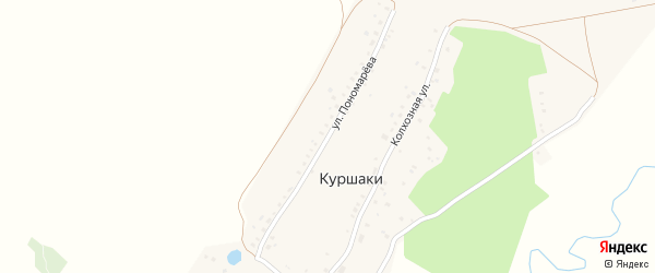 Улица Пономарева на карте деревни Куршаки с номерами домов