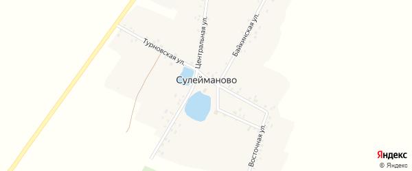 Центральная улица на карте деревни Сулейманово с номерами домов