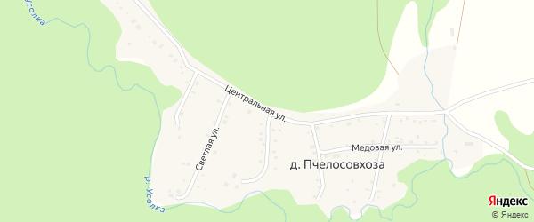 Центральная улица на карте деревни Пчелосовхозы с номерами домов
