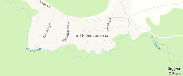 Улица Мира на карте деревни Пчелосовхозы с номерами домов