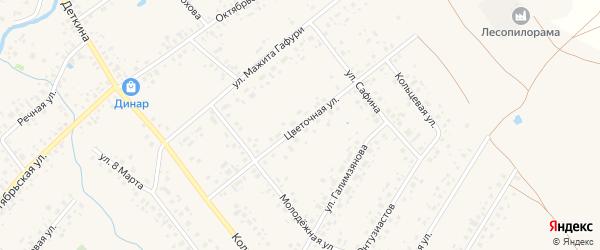 Цветочная улица на карте села Аскино с номерами домов