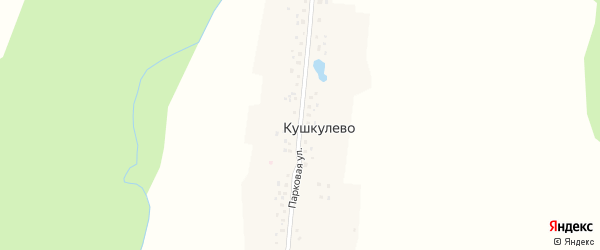 Парковая улица на карте деревни Кушкулево с номерами домов